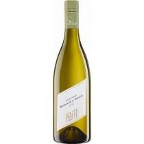 Weingut Pfaffl Grüner Veltliner Weinviertel DAC Reserve Hund 2017 trocken